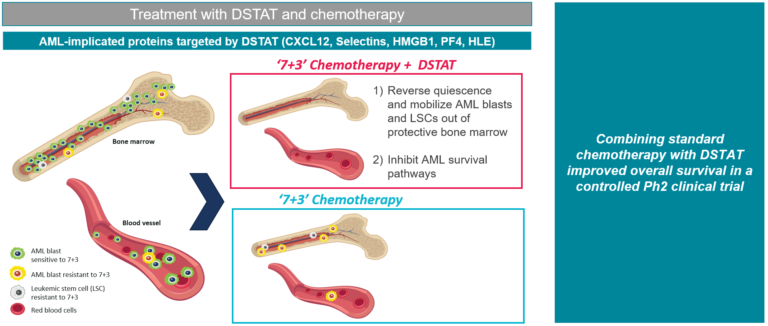 Treatment with DSTAT in chemotherapy